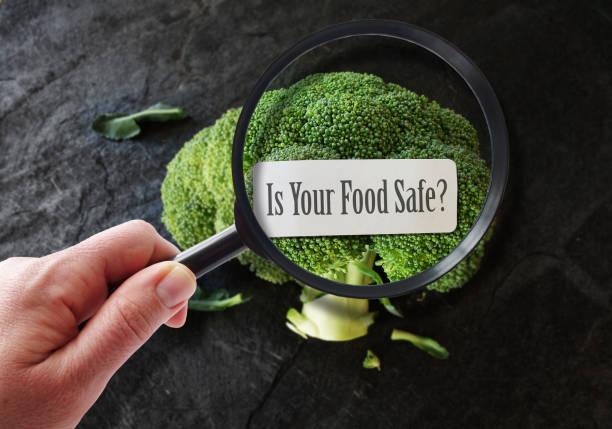 Zdravstveno ispravna hrana