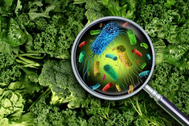 Patogeni mikroorganizmi u hrani